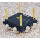 COMFORT-WARMTEPLAAT-40X50CM-+-TEMERATUURREGELAAR-VOOR-KUIKENS-50W-220-240V