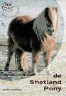 Basisgids-Shetland-pony